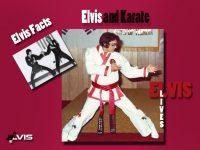 الویس و کاراته