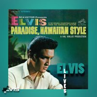 paradise-hawaiian-style