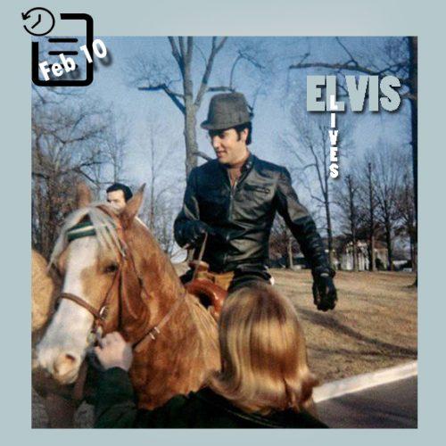 اسب سواری در گریسلند 10 فوریه 1968