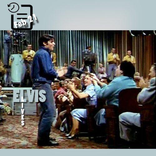 والدین الویس در صحنه ای از فیلم لاوینگ یو