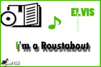 I'm A Roustabout
